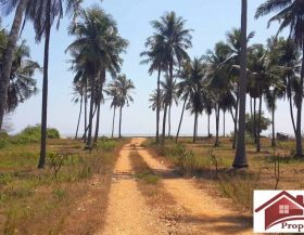 Absolute Beachfront land Kuiburi for sale