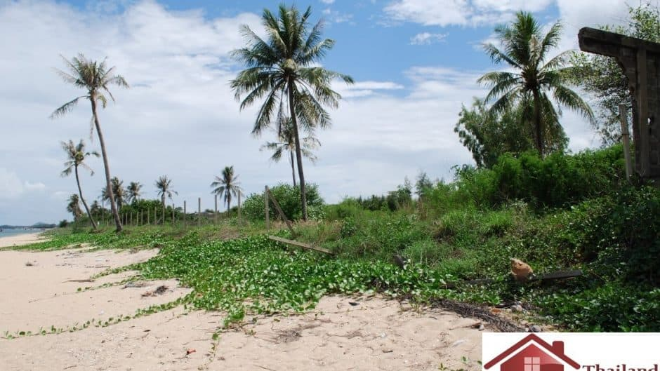 Absolute Beachfront Plot for sale with 300M Frontage