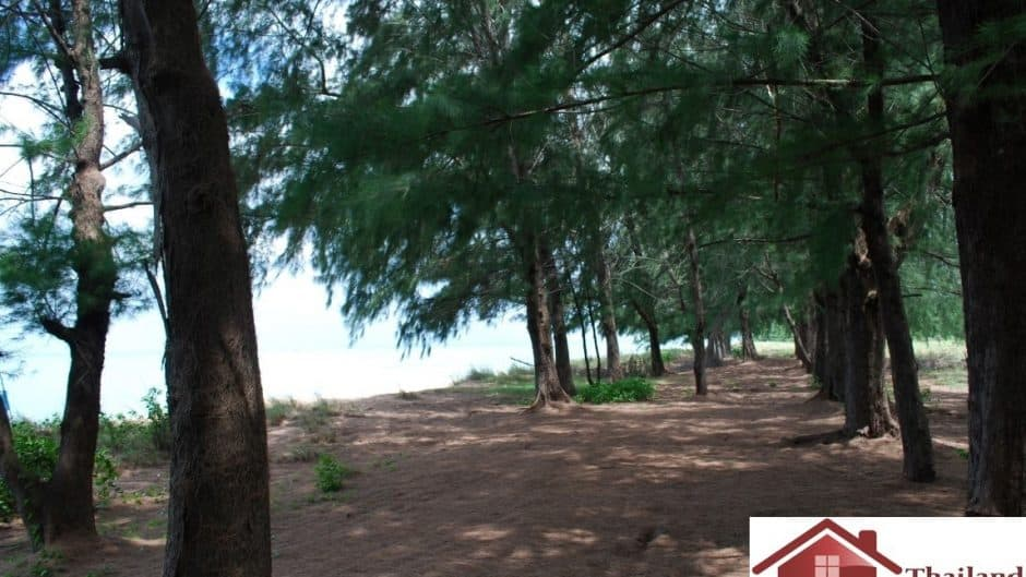 Huay Yang Investment Beachfront Plot for Sale – Thap Sakae