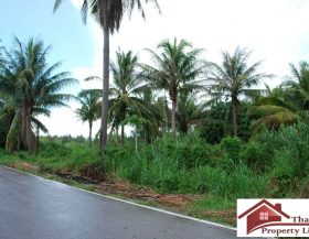Land For Sale Thap Sakae (4)
