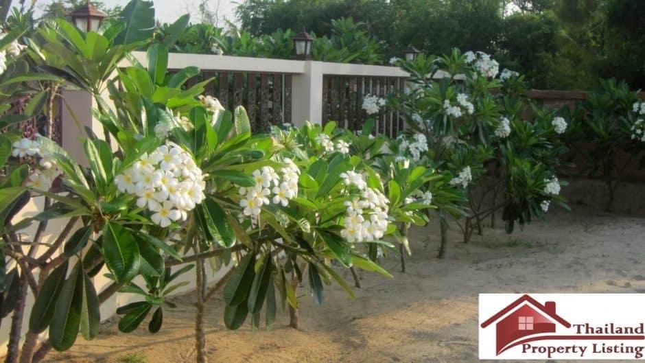 Beachfront Villa On A Large Plot In Kuiburi
